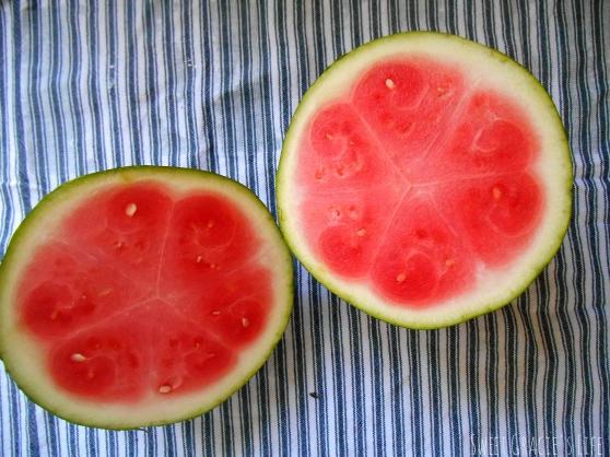 fruitflag1