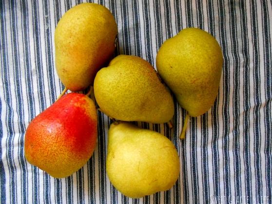 fruitflag3